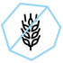 pictogramme sans gluten