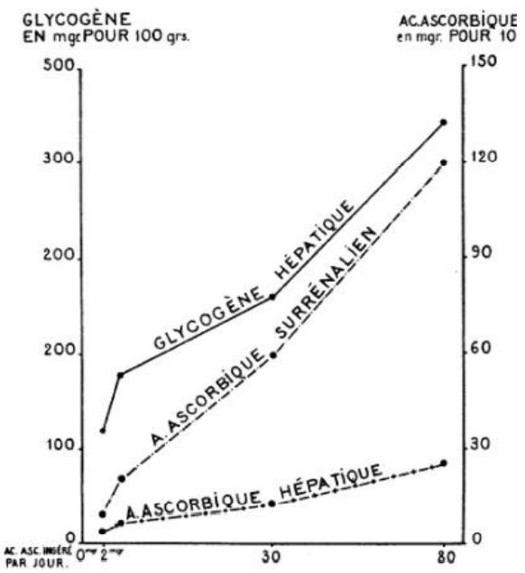 Figure 13 : Evolution du glycogène hépatique en fonction de  l'acide ascorbique